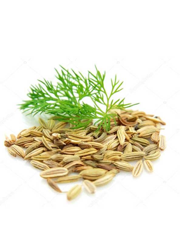 chiết xuất hạt thì là
