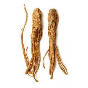 Chiết xuất rễ đương quy
