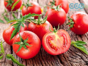 tác dụng của cà chua trong làm đẹp