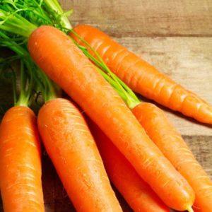 chiết xuất cà rốt