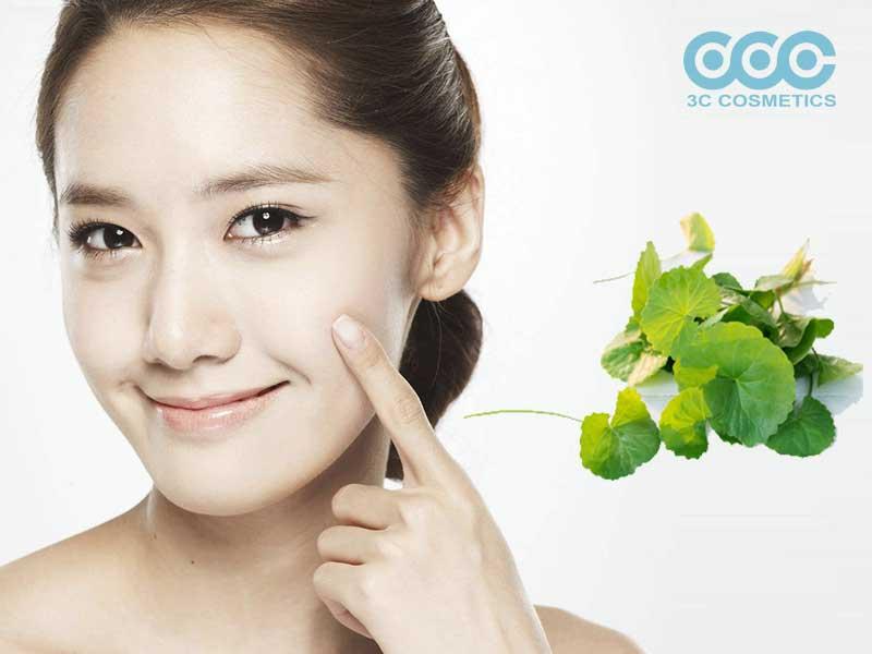 Chiết xuất rau má giúp dưỡng ẩm cho da