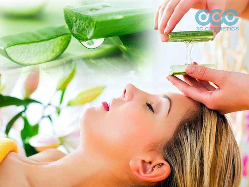 Chiết xuất lô hội giúp dưỡng ẩm cho làn da