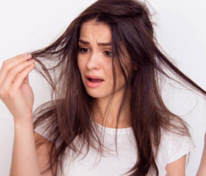 Chiết xuất công dụng giảm rụng tóc
